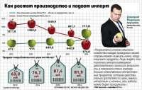 «Кузен премьера», по версии ФБК, начал выращивать яблоки на Кубани